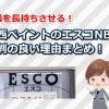 関西ペイントのエスコNBは塗膜を長持ちさせる防食錆止め塗料!